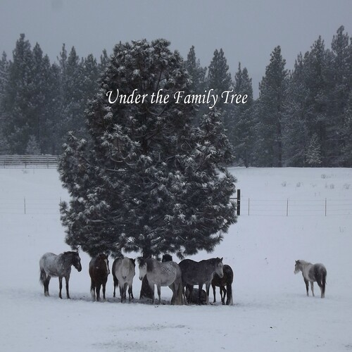 9 Wild Horses