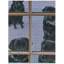 Black Labs Want In Puzzle