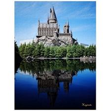 Hogwats Castle