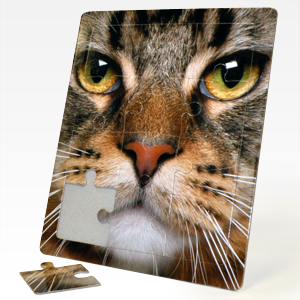 8x10 inch custom standing tray puzzles